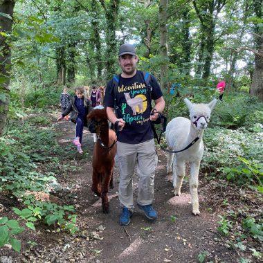 cheshire alpacas experiences (10)
